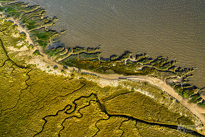 Bradwell Saltmarsh Patterns 2