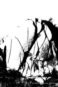 geologic formation #10