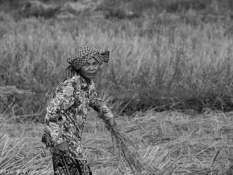 Kampong Speu_Cambodia_20_Dec_2016_121-Edit