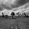 Village 1, Kampong Speu_Cambodia_23_Jun_2017_179-Edit