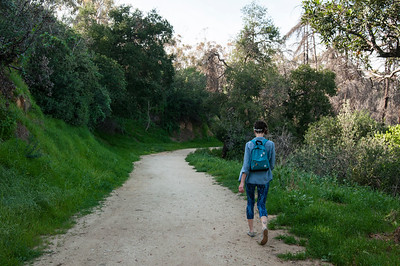 Elysian Park Loop Walk