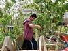 Gardening in the skip