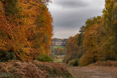 Trent Park in Autumn