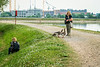 Friendly Ducks