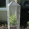 Tomato Cage #2