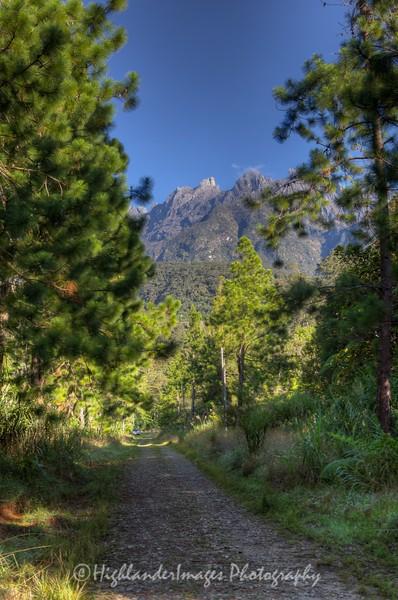 View from track to Magic Mountain Country Home, Mount Kinabalu Golf Course, Pinosuk Plateau, Kundasang, Sabah