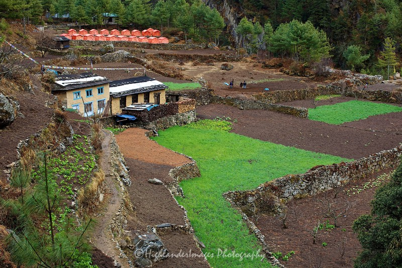 Arrival at Monjo on the trail from Phakding to Monjo and again a lot of agriculture close to the river with neatly tended fields for rice and vegetables.