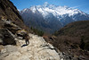 The trail once again started to drop down back to the river between Namche Bazaar and Tengboche.