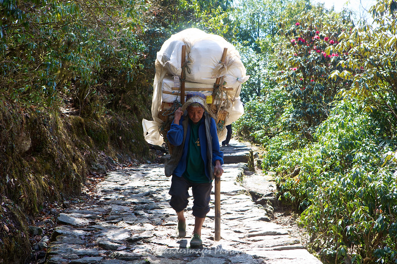 Porter with a full load heads towards Monjo and Phakding from Lukla.