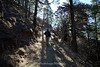 The start of the downhill trek from Tengboche towards Namche Bazaar