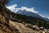The final part of the trek between Monjo and Lukla.