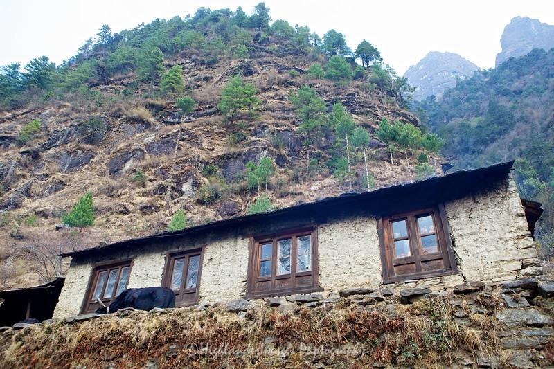 Small house close to Dudh Kosi river between Lukla to Phakding