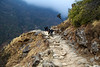 The steep path down from Namche Bazaar to the river and on towards Phakding.