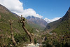 A short break at a small tea house offered us this wonderful view up the Khumbu Valley between Phakding and Lukla.