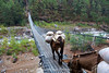 Donkey train makes a river crossing between Namche Bazaar and Jorsalle.