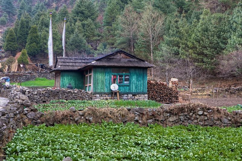 Rural scene between Koshigaun village and Phakding
