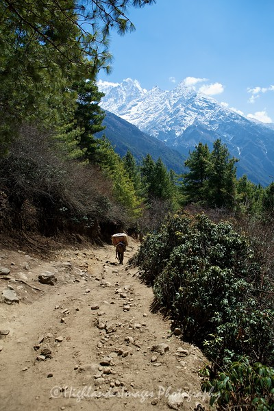 A porter slowly making his way up the last section towards Namche Bazaar from Jorsalle.