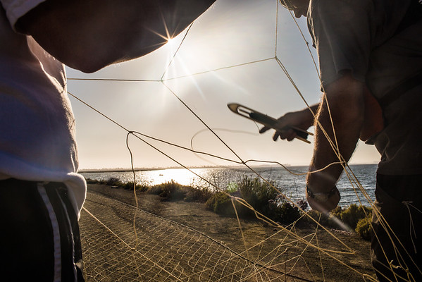 Jeff Seminoff repairs a net with a technique he learned during his conservation efforts with turtle fishermen in Baja, Mexico.