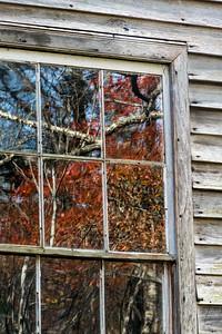 Window Study  05