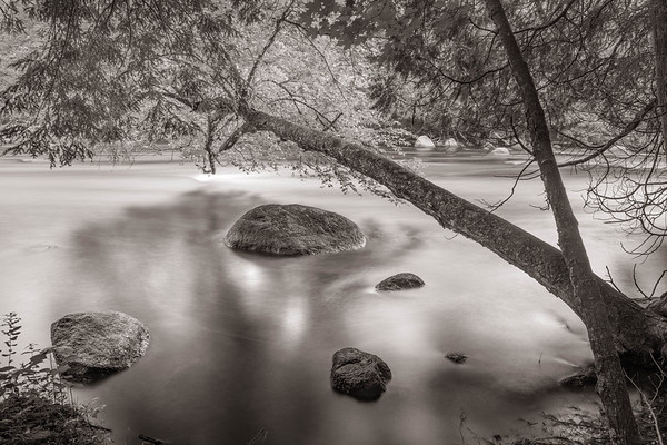 Shaded Rock - Wolf River, Wisconsin