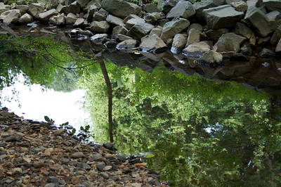 Stream Reflection