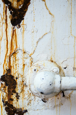 Swiftsure Rust