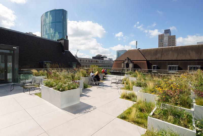 Timmerhuis. OMA architects. Tuinarchitectuur: Helvoirt groenvoorzieningen
