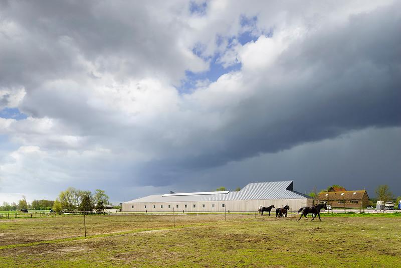 Paardenpension Lentenvreugd Katwijk. HCVA .