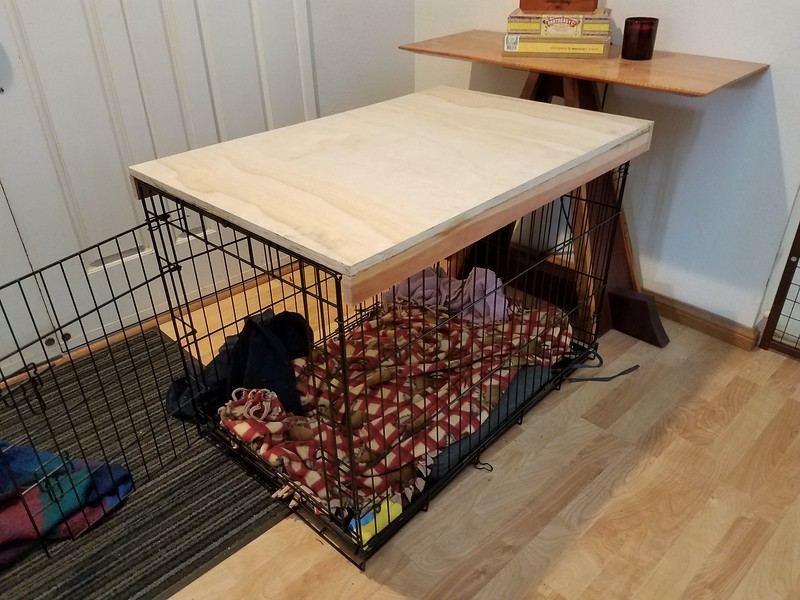 coffee table top made for a dog crate