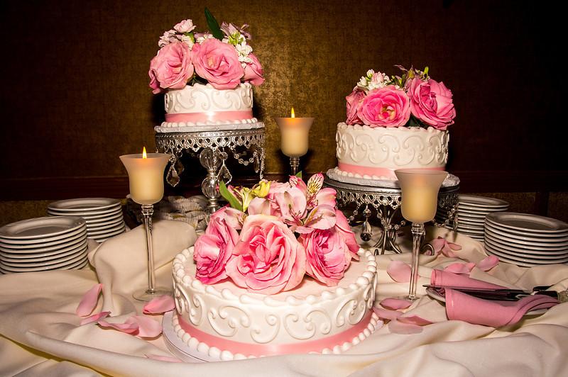 2012-marcia-wedding-12