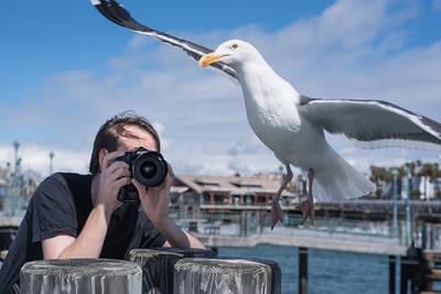 Lens #2: Manhattan Beach Pier