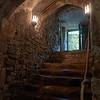 Medieval Cellars
