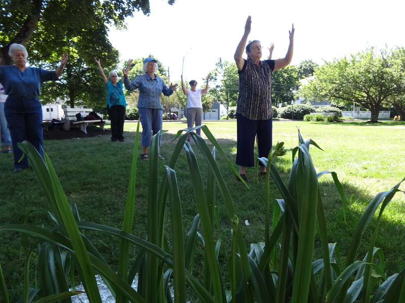 Billerica seniors find balance and peace at a recent tai chi class led by Joanne Shaughnessy  (front) on the lawn of the council on aging. - photo by Mary Leach