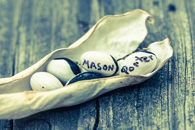 Mason Porter 2013
