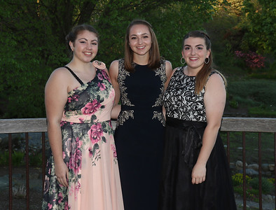 2017 Colchester Prom (Lang barn)