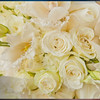 SLIDE SHOW<br /> Click here to view The Wedding of Kassandra & Brian