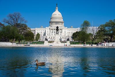 20190416_Washington_DC-37306