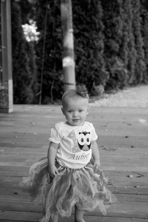 Aubrey & Lainey -- 1 year old