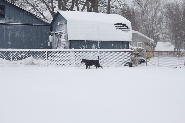 Snow -- 12.26.12