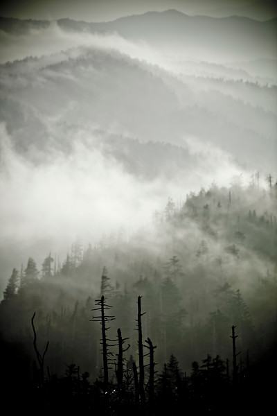 Clingmans Dome During Sunrise Smoky Mountains