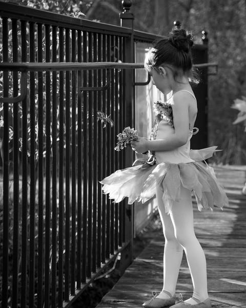 dance ava2017-156.jpg