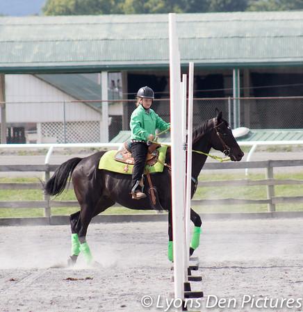 Great Frederick Fair 4-H/FFA Western Horse & Pony show 2