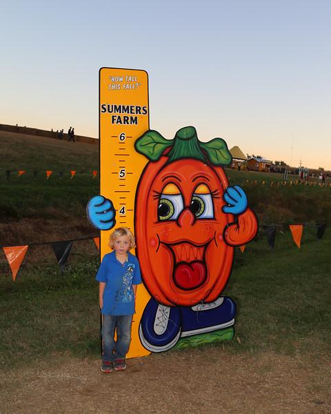 Summers Farm 2016-28.jpg