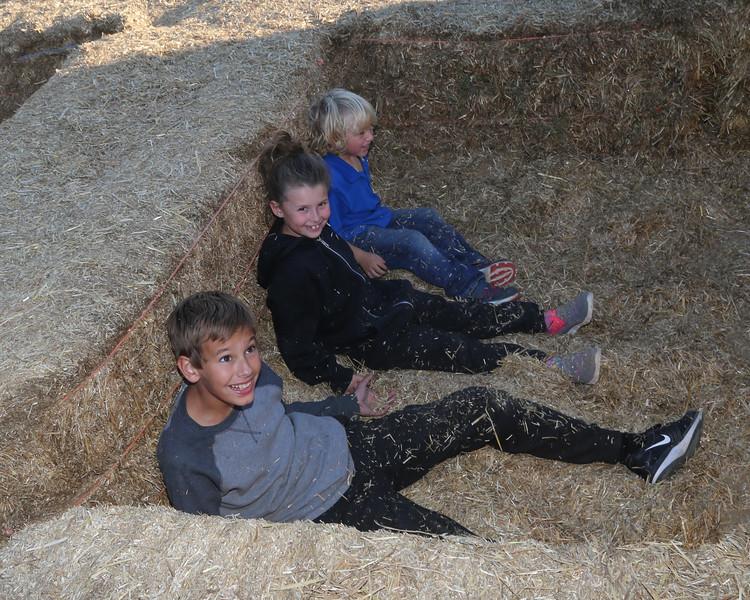Summers Farm 2016-237.jpg