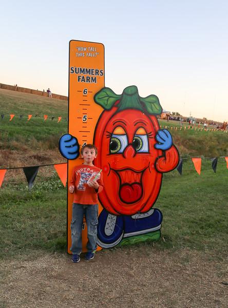 Summers Farm 2016-27.jpg