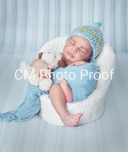 (Winnipeg Newborn Photography 5 19