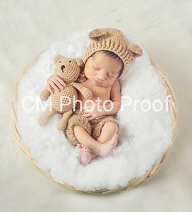 Winnipeg Newborn Photographers 5 19.2