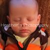 Baby Raiffa_06