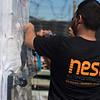 Nest-_DSC2770