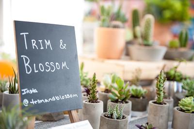 Trim&Blossom-097692